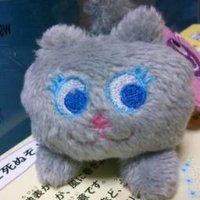 にゃん | Social Profile