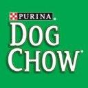 Photo of DogChowChile's Twitter profile avatar