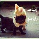 الحب كلمات (@01293447Sadam) Twitter
