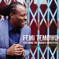 Femi Temowo | Social Profile