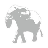 白象 | Social Profile