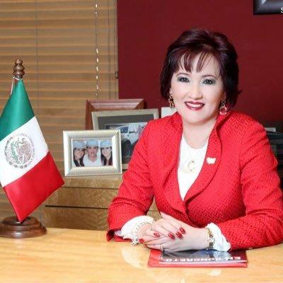 Bertha Gómez Fong | Social Profile