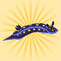 Seaslug of Doom | Social Profile