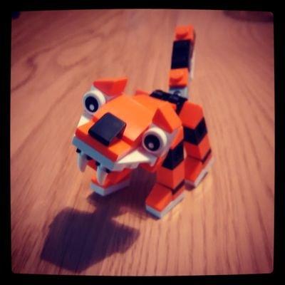 Paper Tiger | Social Profile