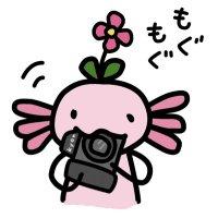 キョン | Social Profile