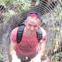Dave Verzijl | Social Profile