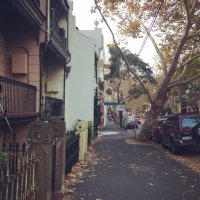 Surry Hills | Social Profile