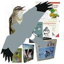 Birdersmarket (@birdersmarket) Twitter