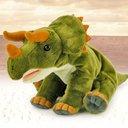triceratops62