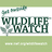 @wildlife_watch