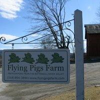 Flying Pigs Farm | Social Profile