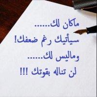 @musaalfredji