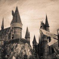 HogwartsTurk