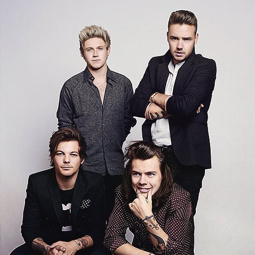 One Direction France Social Profile