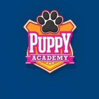 @PuppyAcademyTV