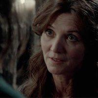 Catelyn Stark | Social Profile