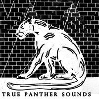 TRUE PANTHER SOUNDS   Social Profile