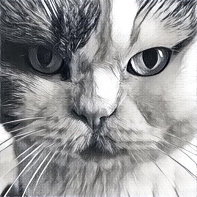 bogo_lode | Social Profile