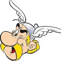 asterixpanels