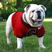 @Bulldogs_GHS