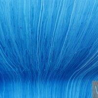 my blue sea | Social Profile