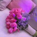 M.ahmed Ali (@01003010440M) Twitter
