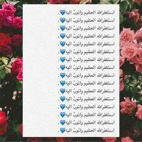 @alwafie44