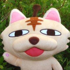 MATSUMO Social Profile