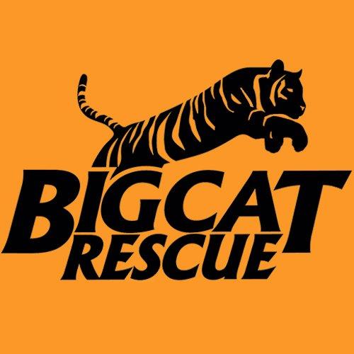 Big Cat Rescue Social Profile