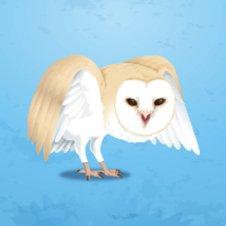HOTPAN2のフクロウと戯れたいほう | Social Profile