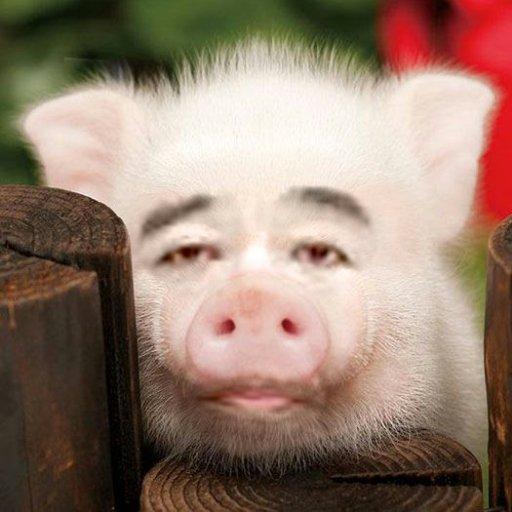 豚の餌にしてやろうかbot