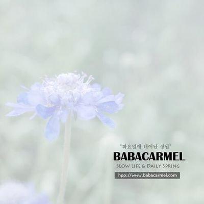 BABACARMEL | Social Profile