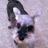 The profile image of madoligesu