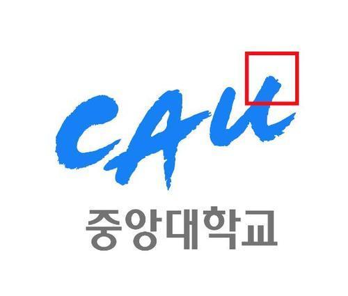 중앙대학교 CAU Social Profile