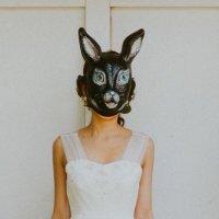 まみぽん | Social Profile