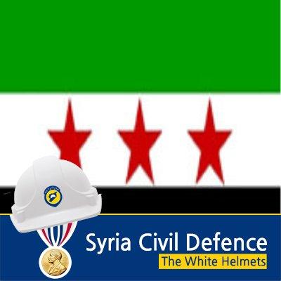 Eagle Syrian | Social Profile