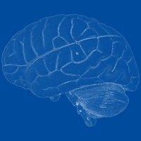 neurofreiburg