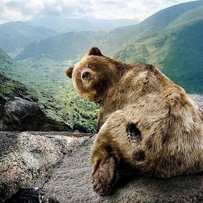 口水熊 | Social Profile