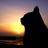 The profile image of tamori_kari