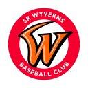 Photo of Wyverns_Story's Twitter profile avatar