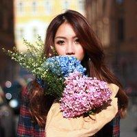 Sophia Chong | Social Profile