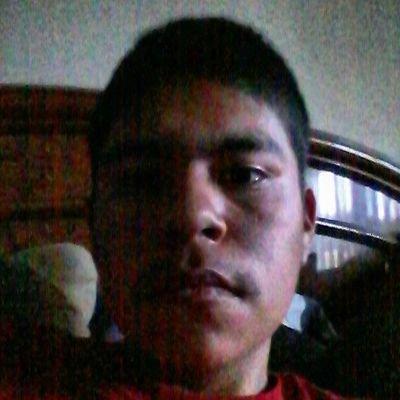 Luis Matias   Social Profile