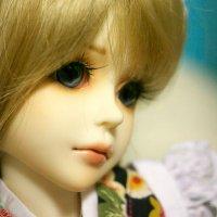 (20) | Social Profile