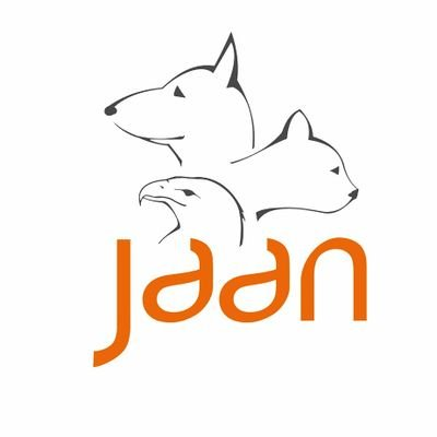 Jakarta Animal Aid   Social Profile