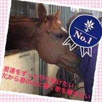 ローゼンカバリー(なりきりじゃありません   Social Profile