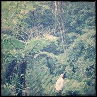 Yuri Horie | Social Profile