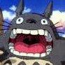 Totoro (@0Totoro0) Twitter