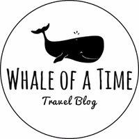 whaleofatime_de