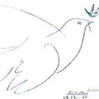 Construcción de Paz | Social Profile