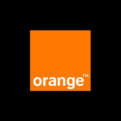 Orange Jordan